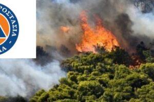 πυρκαγιά σε δάσος_σήμα πολιτικής προστασίας