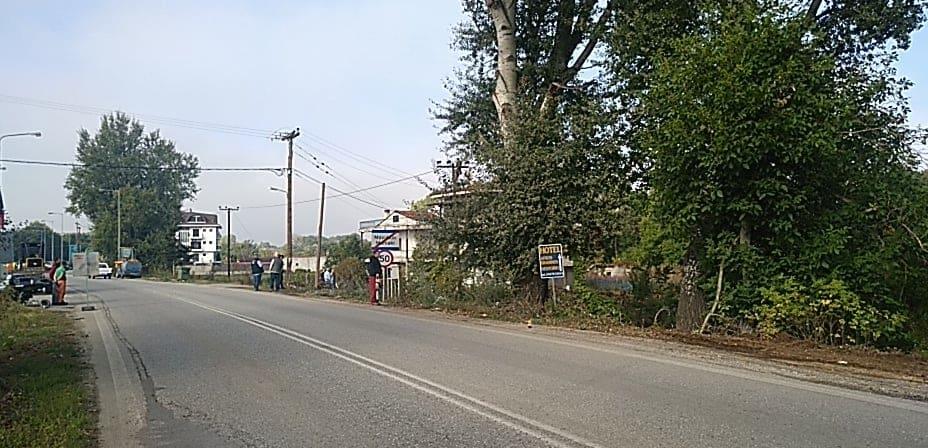 Ολοκληρώθηκε η Απομάκρυνση Επικίνδυνων Δέντρων στο δρόμο Μανιάκοι-Κολοκυνθού από την Π.Ε. Καστοριάς.